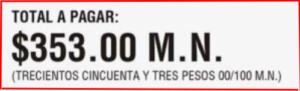 Recibos-de-Luz-CFE-Total-a-pagar